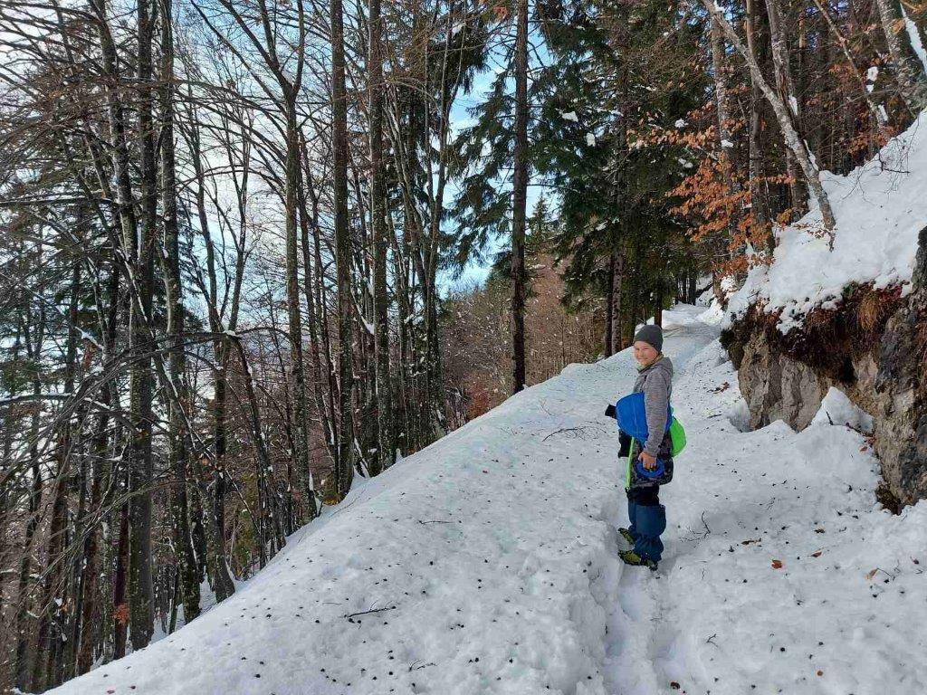 zimski-sprehod